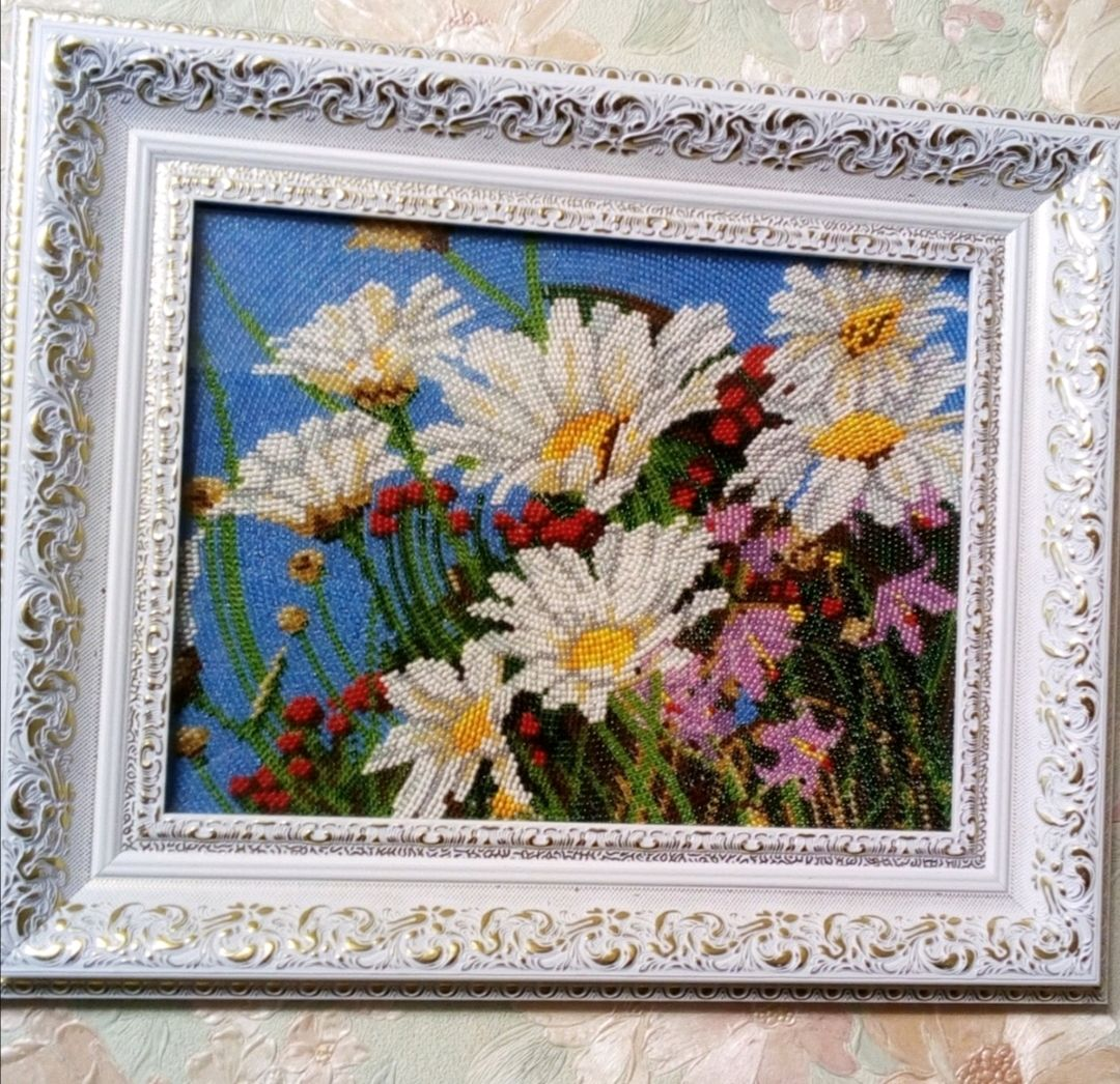 Chamomile, Pictures, Saransk,  Фото №1