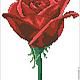 """Вышивка ручной работы. Ярмарка Мастеров - ручная работа. Купить Дизайн машинной вышивки """"Красная роза"""", формат EXP,ART. Handmade."""