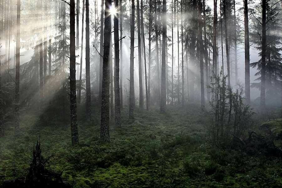 Авторские работы пейзаж, Фото-работы, Москва, Фото №1