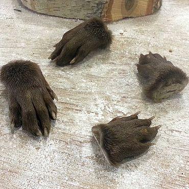 Materials for creativity handmade. Livemaster - original item Otter feet. Handmade.