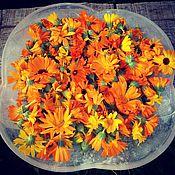 Цветы и флористика ручной работы. Ярмарка Мастеров - ручная работа календула (сухоцвет). Handmade.