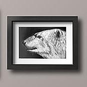 Картины и панно handmade. Livemaster - original item Bear, 21h29.7cm, pastel Painting, black and white portrait. Handmade.