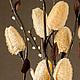 Персональные подарки ручной работы. Цветок-светильник  Луфа. Цветильник(цветы-светильники). Ярмарка Мастеров. Цветы светильники, подарок на свадьбу
