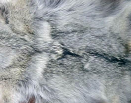 Шитье ручной работы. Ярмарка Мастеров - ручная работа. Купить волчий мех. Handmade. Серый, мех