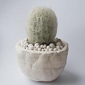 Цветы и флористика ручной работы. Ярмарка Мастеров - ручная работа Горшки для кактусов и кактусят. Handmade.