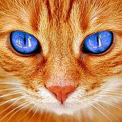 Фотокартины ручной работы. Ярмарка Мастеров - ручная работа Рыжий кот. Картина на холсте.. Handmade.