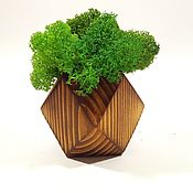 Подарки к праздникам handmade. Livemaster - original item Souvenirs: Stabilized moss in pots. Handmade.