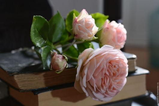 Цветы ручной работы. Ярмарка Мастеров - ручная работа. Купить Английская роза с простой тонировкой.Цветочная скульптура.. Handmade.
