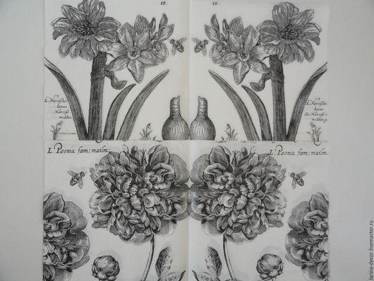 Декупаж и роспись ручной работы. Ярмарка Мастеров - ручная работа. Купить 2 вида! Салфетки для декупажа Цветы монохром. Handmade.