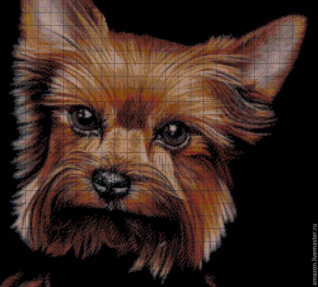 Kit embroidery with beads 'YORKSHIRE TERRIER' full lining with beads, Embroidery kits, Ufa,  Фото №1