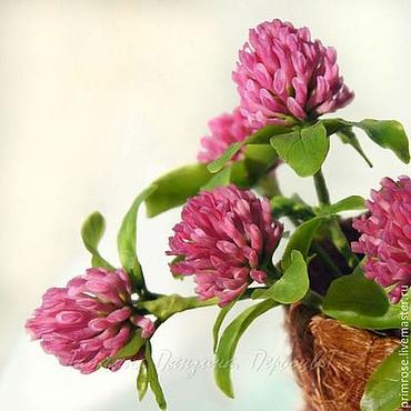 Цветы и флористика ручной работы. Ярмарка Мастеров - ручная работа Клевер, приносящий удачу. (цветы из холодного фарфора). Handmade.