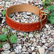 Для домашних животных, handmade. Livemaster - original item Collar for dog.. Handmade.