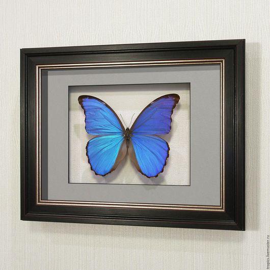 Абстракция ручной работы. Ярмарка Мастеров - ручная работа. Купить Морфо Дидиус или Большая синяя бабочка счастья. Handmade.