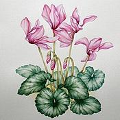 """Картины и панно ручной работы. Ярмарка Мастеров - ручная работа Рисунок """"Цикламены"""" акварель. Handmade."""