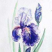 Картины и панно ручной работы. Ярмарка Мастеров - ручная работа Фиолетовый ирис, акварель.. Handmade.