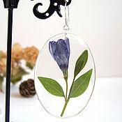 Украшения handmade. Livemaster - original item Transparent Resin Earrings with Real Wild Blue Flowers Eco 2. Handmade.