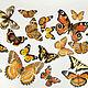 Order Vinyl sticker - Colorful butterflies. Glow in the dark. Art-foto. Livemaster. . Interior elements Фото №3
