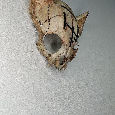 Для дома и интерьера ручной работы. Ярмарка Мастеров - ручная работа Череп кошки. Handmade.