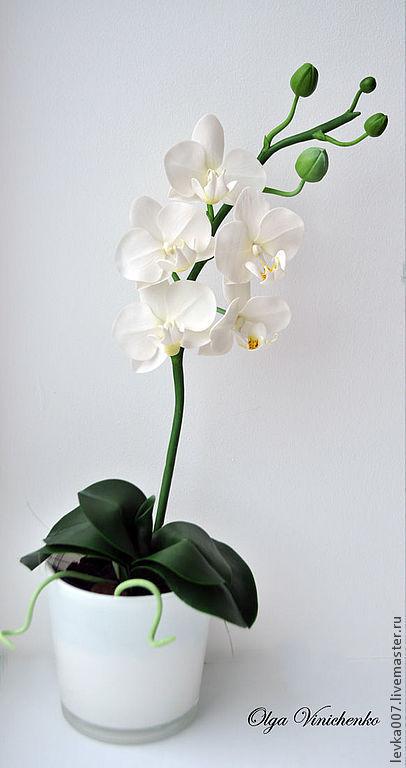 Цветы ручной работы. Ярмарка Мастеров - ручная работа. Купить Орхидея фаленопсис из полимерной глины. Handmade. Белый, подарок