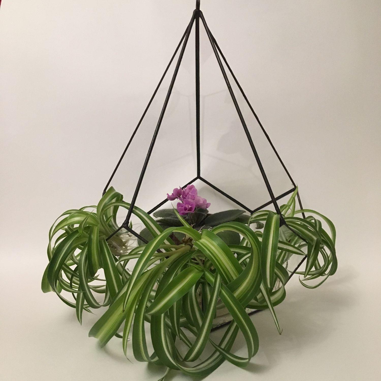 Form for florarium-planters ' Drop', Florariums, Magnitogorsk,  Фото №1