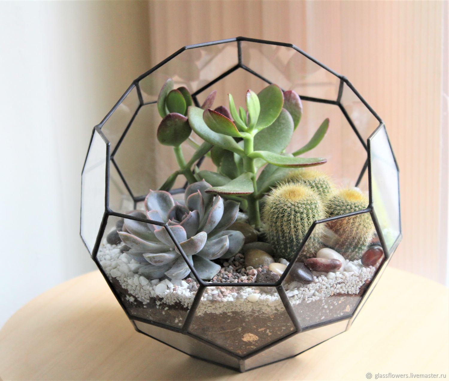 The Floriana Tiffany the ball with the succulents and cactus, Florariums, St. Petersburg,  Фото №1