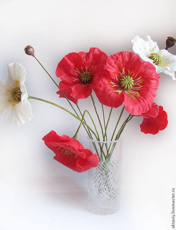 Маки, Цветы, Брянск,  Фото №1