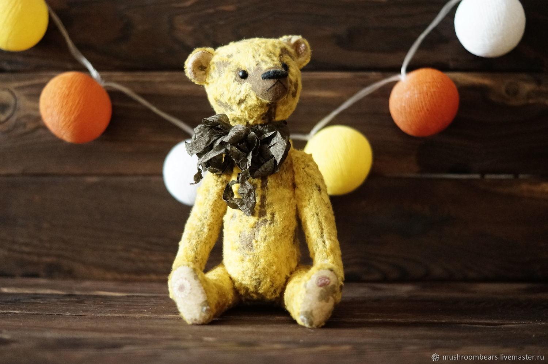 Тедди-медведь Соломон, Игрушки, Москва, Фото №1