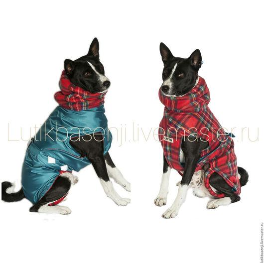 Одежда для собак, ручной работы. Ярмарка Мастеров - ручная работа. Купить Попона - ПЕРЕВЕРТЫШ. Handmade. Морская волна, басенджи