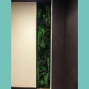 Цветы и флористика handmade. Livemaster - original item Fotokartin of stabilized moss and plants. Handmade.
