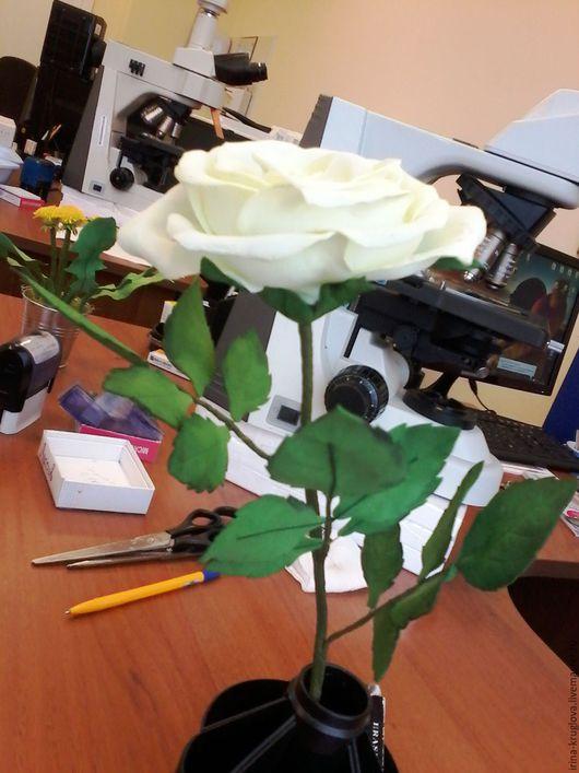 """Цветы ручной работы. Ярмарка Мастеров - ручная работа. Купить Роза на стебле """"Белоснежка"""". Handmade. Белый, роза из фома"""