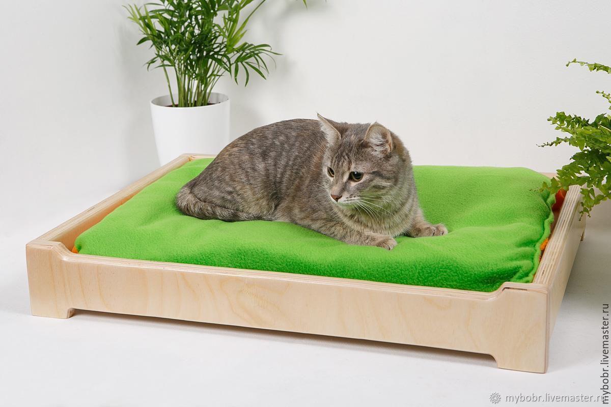 кроватки для кошек фото случае