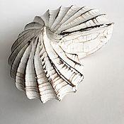Для дома и интерьера handmade. Livemaster - original item Wooden Nautilus figurine. Handmade.