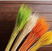 Материалы для творчества handmade. Livemaster - original item Dried wheat. Handmade.