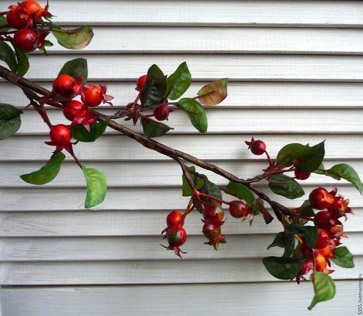 Большая ветка шиповника с листьями Ягоды с листьями Палочка-выручалочка.