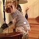 Одежда для собак, ручной работы. Ярмарка Мастеров - ручная работа. Купить Жилет для маленькой собачки Сердце. Handmade. Серый