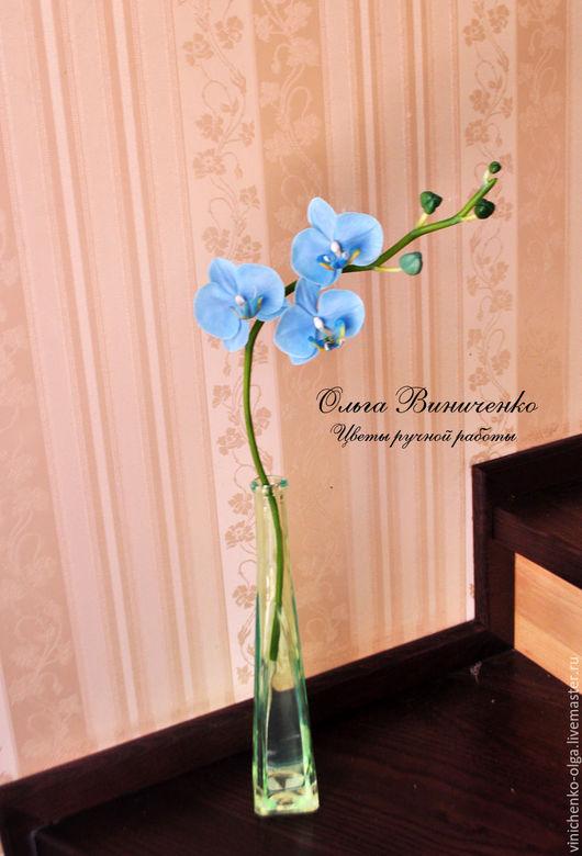 Цветы ручной работы. Ярмарка Мастеров - ручная работа. Купить Голубая орхидея фаленопсис из полимерной глины. Handmade. Голубой