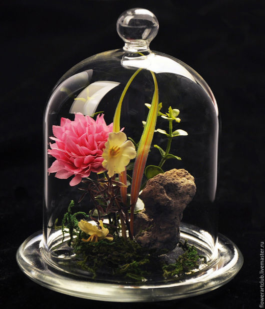Материалы для флористики ручной работы. Ярмарка Мастеров - ручная работа. Купить Стеклянный купол  на стеклянной основе. Handmade. Вазочка