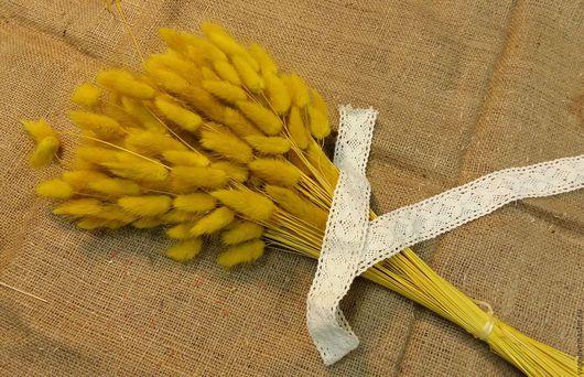 Материалы для флористики ручной работы. Ярмарка Мастеров - ручная работа. Купить Лагурус жёлтый 30шт Сухоцвет. Handmade. Желтый