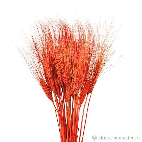 Материалы:  пшеница оранжевая, , Москва, Фото №1