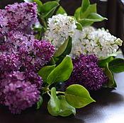 Подарки к праздникам handmade. Livemaster - original item Bouquet of lilac polymer clay.. Handmade.