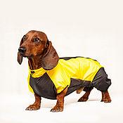 Для домашних животных, ручной работы. Ярмарка Мастеров - ручная работа Непромокаемый комбинезон дождевик для собак. Handmade.