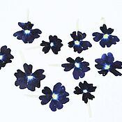 Материалы для творчества handmade. Livemaster - original item Dried verbena flowers(dark violet, in a set of 10 pcs). Handmade.
