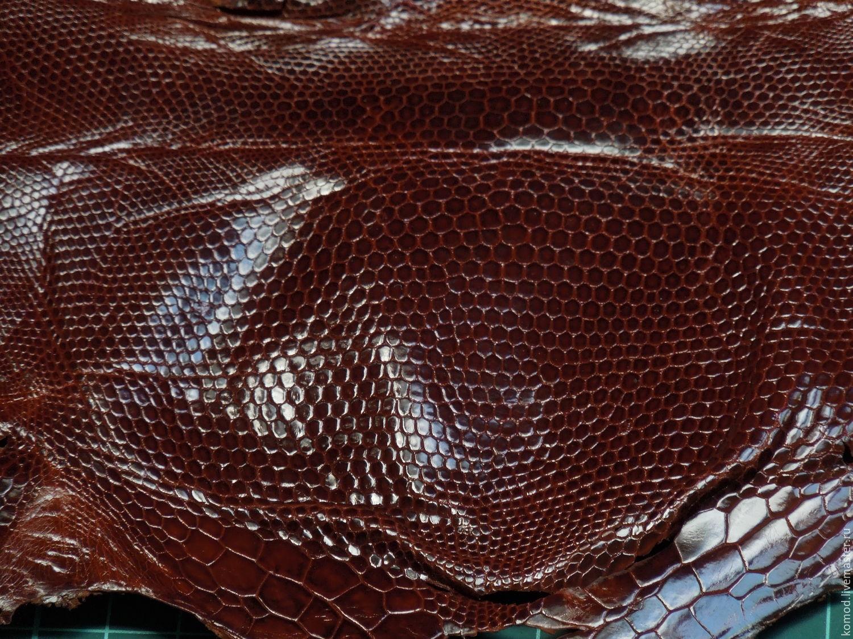 Натуральная кожа игуаны (обрезь) №2, Кожа, Москва, Фото №1