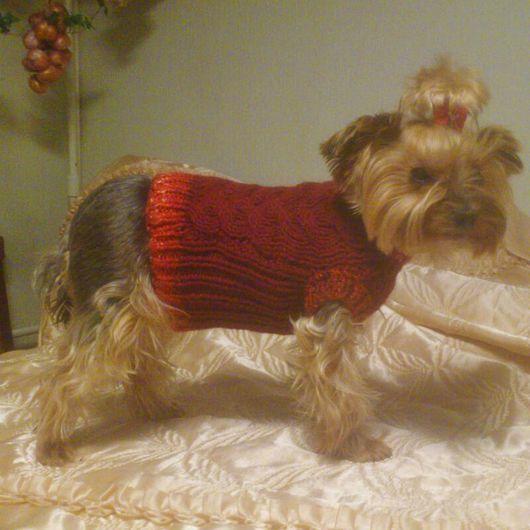 """Одежда для собак, ручной работы. Ярмарка Мастеров - ручная работа. Купить Одежда для собак. Свитер """"Короткий"""". Handmade. Тёмно-синий"""