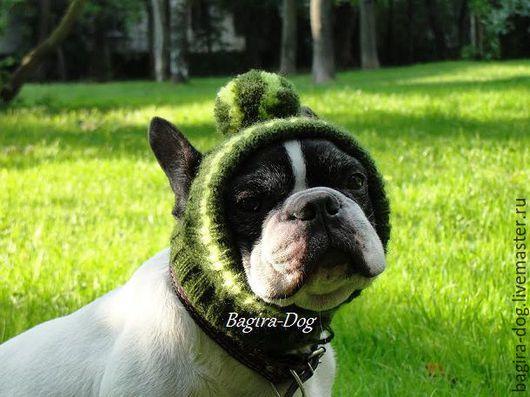 Одежда для собак, ручной работы. Ярмарка Мастеров - ручная работа. Купить Шапки для собак ( французского бульдога). Handmade.