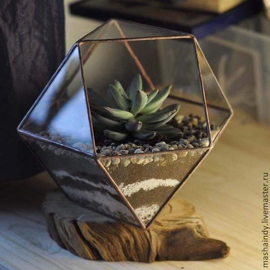 Интерьерные композиции ручной работы. Ярмарка Мастеров - ручная работа. Купить Террариум для цветов (кубооктаэдр средний). Handmade. Белый, террариум