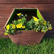 handmade. Livemaster - original item Hexagonal planter Green Apple. Handmade.