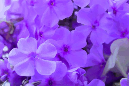 Картины цветов ручной работы. Ярмарка Мастеров - ручная работа. Купить Цветы. Handmade. Картины, картины для интерьера, цветы