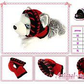 Для домашних животных, handmade. Livemaster - original item Hat for dogs and cats. Handmade.