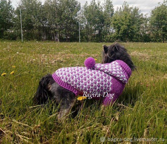 Sweater for dogs with hood, Pet clothes, Moscow,  Фото №1